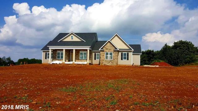 456 Freezeland Manor, Linden, VA 22642 (#WR10352969) :: Labrador Real Estate Team