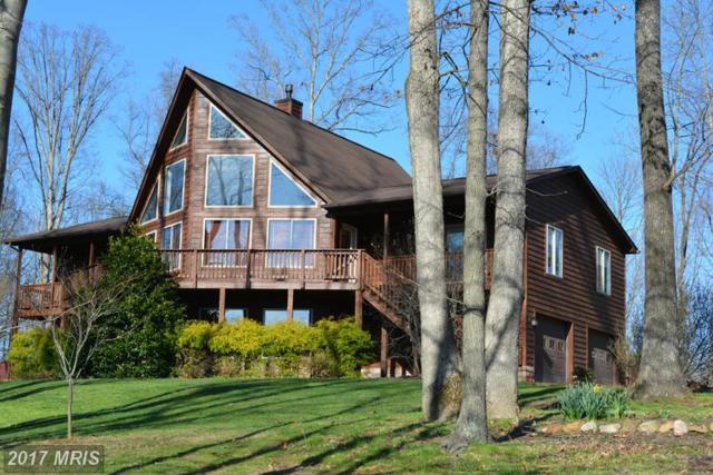 33 Timberland Manor Drive, Bentonville, VA 22610 (#WR9901956) :: LoCoMusings
