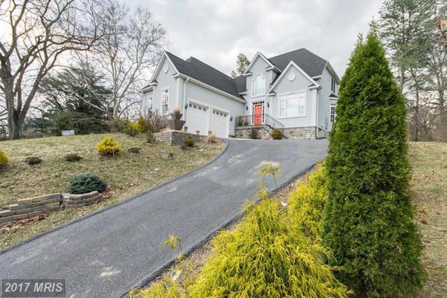 1399 Royal Avenue, Front Royal, VA 22630 (#WR9944830) :: LoCoMusings
