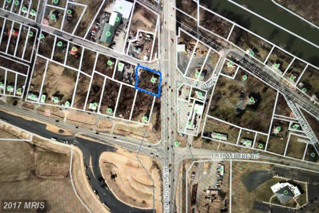 3 W. Duck Street, RIVERTON, VA 22630 (#WR9956556) :: LoCoMusings