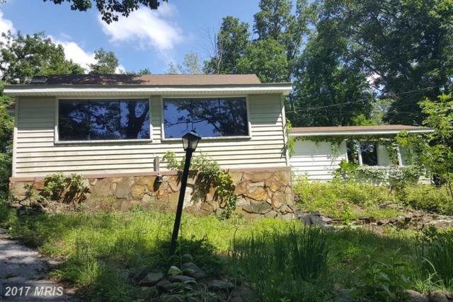 462 Luchase Road, Linden, VA 22642 (#WR9986620) :: Susan Scheiffley & Company Homes