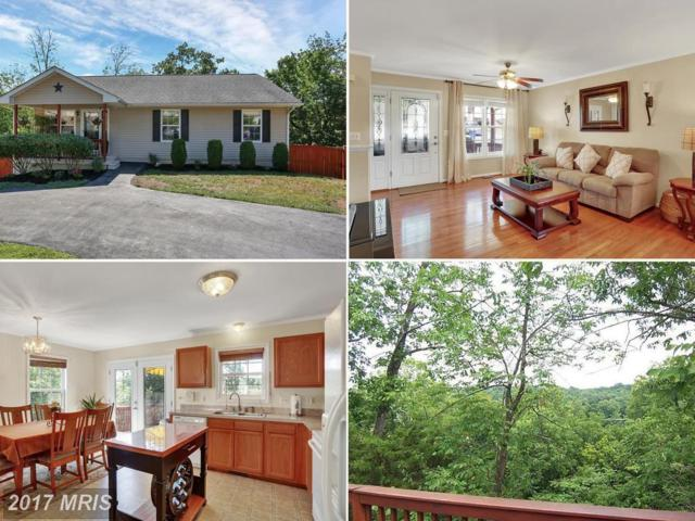 29 Crestview Drive, Front Royal, VA 22630 (#WR9997286) :: LoCoMusings