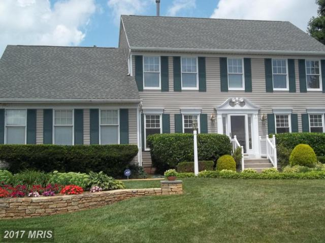 3 Griffin Court, New Freedom, PA 17349 (#YK10020752) :: Pearson Smith Realty