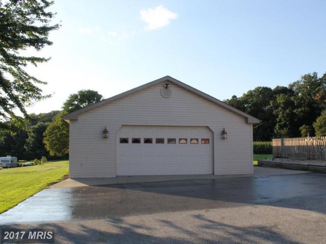 2425 Grandview Road, Hanover, PA 17331 (#YK10036439) :: Pearson Smith Realty