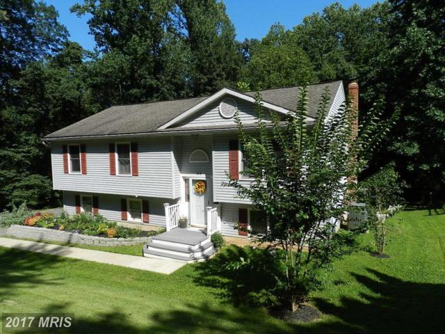 58 Woodvale Road, Airville, PA 17302 (#YK10036854) :: Pearson Smith Realty