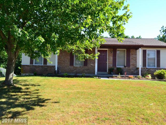 118 Circle Drive, Hanover, PA 17331 (#YK10053996) :: Pearson Smith Realty
