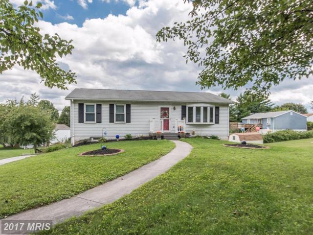 3280 Grandview Avenue, Hanover, PA 17331 (#YK10056224) :: Pearson Smith Realty