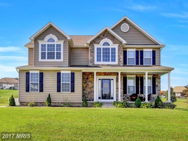 13 Tyler Drive, Hanover, PA 17331 (#YK10063773) :: Pearson Smith Realty