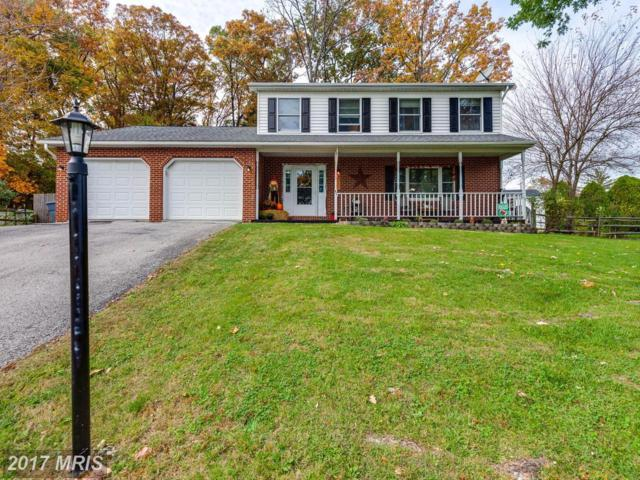 45 Cardinal Drive, Hanover, PA 17331 (#YK10100460) :: Pearson Smith Realty
