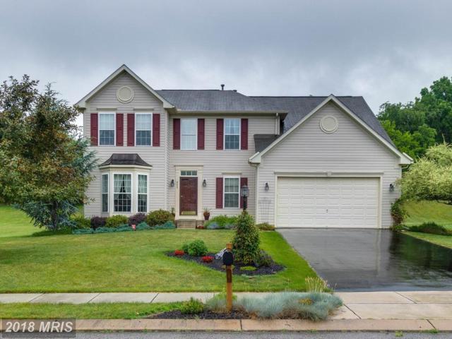 452 El Vista Drive, Hanover, PA 17331 (#YK10133924) :: Pearson Smith Realty