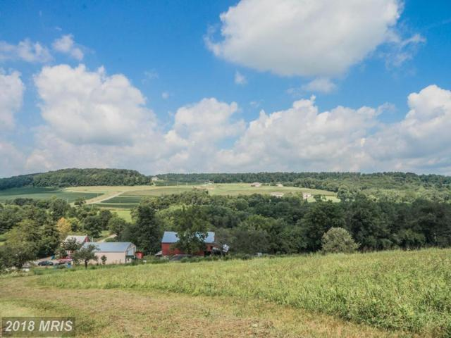 2207 Spangler Road, Seven Valleys, PA 17360 (#YK10136367) :: Pearson Smith Realty