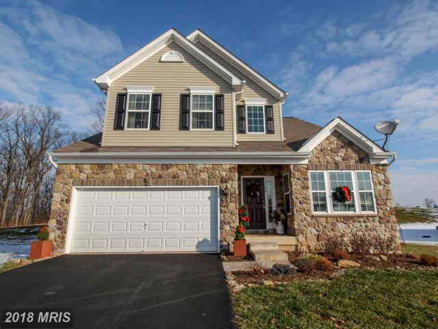 16 Shady Tree Court, Delta, PA 17314 (#YK10137452) :: Pearson Smith Realty