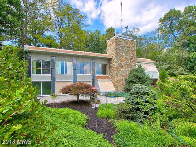 920 Laurel Woods Lane, Hanover, PA 17331 (#YK10320251) :: The Savoy Team at Keller Williams Integrity