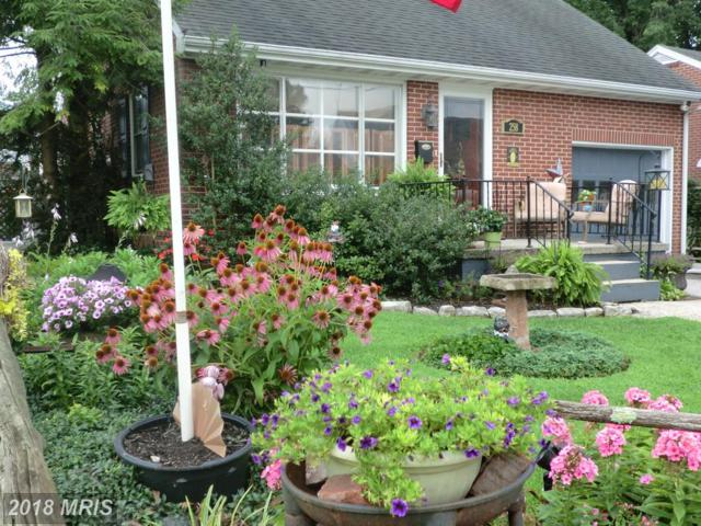 258 Diller Road, Hanover, PA 17331 (#YK10325238) :: Bob Lucido Team of Keller Williams Integrity