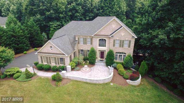 17188 Tattershall Way, Jeffersonton, VA 22724 (#CU9734370) :: Pearson Smith Realty