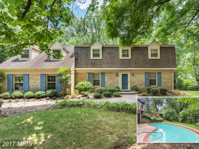 521 Powell Drive, Annapolis, MD 21401 (#AA10000592) :: Pearson Smith Realty