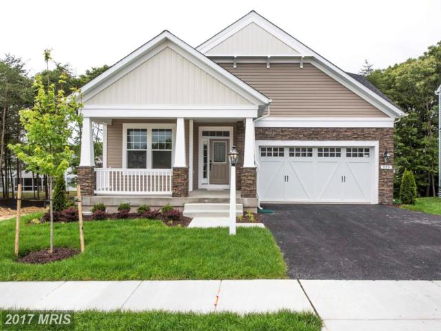 0 Jersey Bronze Way, Pasadena, MD 21122 (#AA10001116) :: The Gus Anthony Team