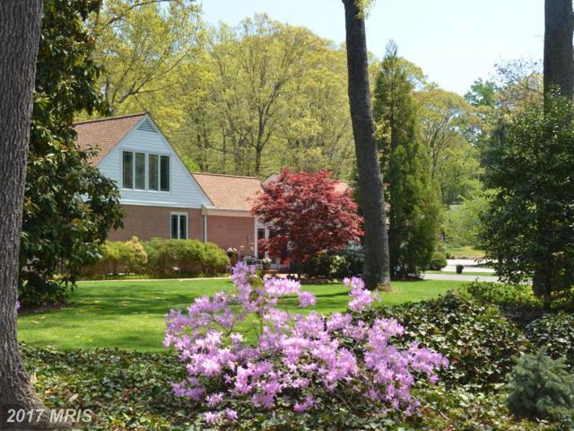 4 Saint Ives Drive, Severna Park, MD 21146 (#AA10004684) :: Pearson Smith Realty
