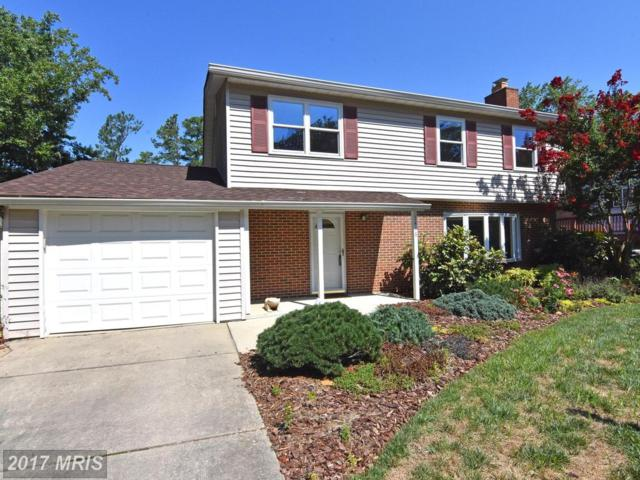 1416 Catlyn Place, Annapolis, MD 21401 (#AA10020241) :: Pearson Smith Realty