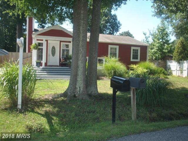 1211 Spruce Ave, Shady Side, MD 20764 (#AA10020733) :: Pearson Smith Realty
