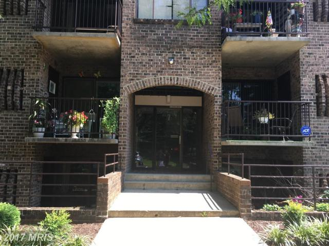 7 Silverwood Circle #11, Annapolis, MD 21403 (#AA10020777) :: Pearson Smith Realty