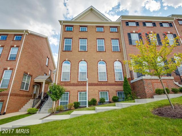 7658 Elmcrest Road, Hanover, MD 21076 (#AA10026269) :: Pearson Smith Realty