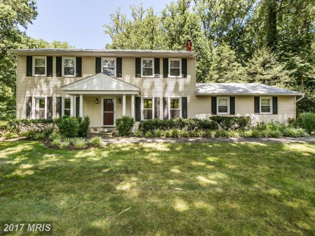 1908 Severn Grove Road, Annapolis, MD 21401 (#AA10028029) :: Pearson Smith Realty