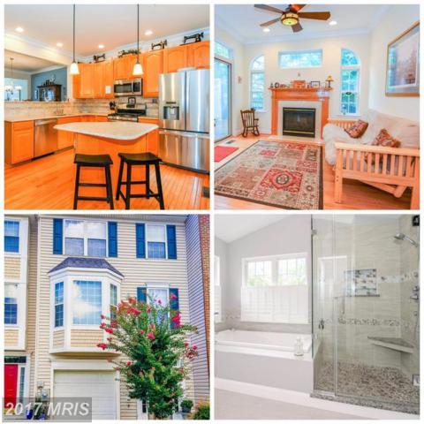 860 Stonehurst Court, Annapolis, MD 21409 (#AA10038865) :: Pearson Smith Realty