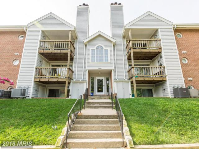 201 Water Fountain Court #102, Glen Burnie, MD 21060 (#AA10045322) :: Pearson Smith Realty