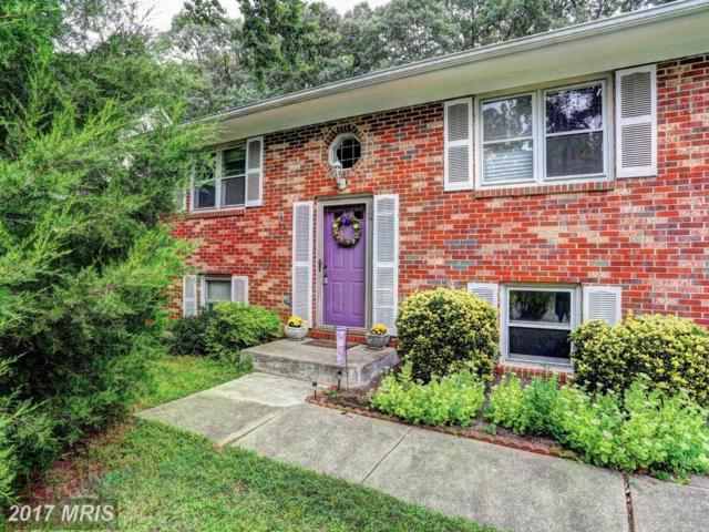 531 Kenmore Road, Severna Park, MD 21146 (#AA10045402) :: Pearson Smith Realty