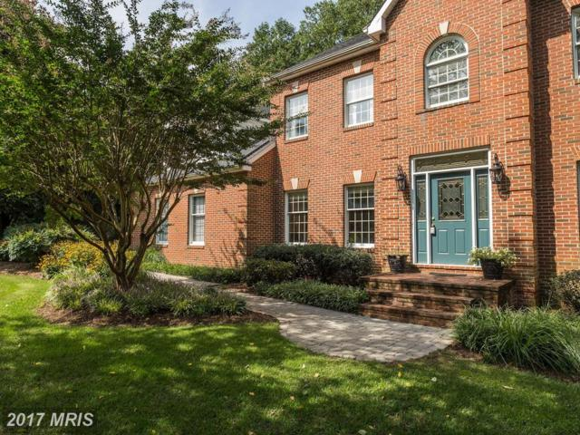 3537 Russell Thomas Lane, Davidsonville, MD 21035 (#AA10046194) :: Pearson Smith Realty