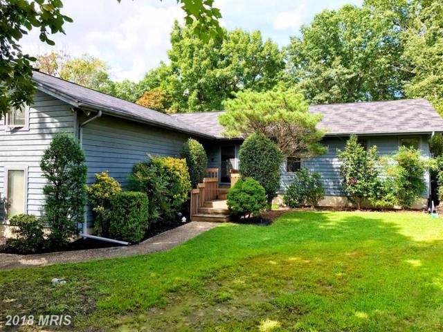 4638 Mountain Road, Pasadena, MD 21122 (#AA10050584) :: Pearson Smith Realty