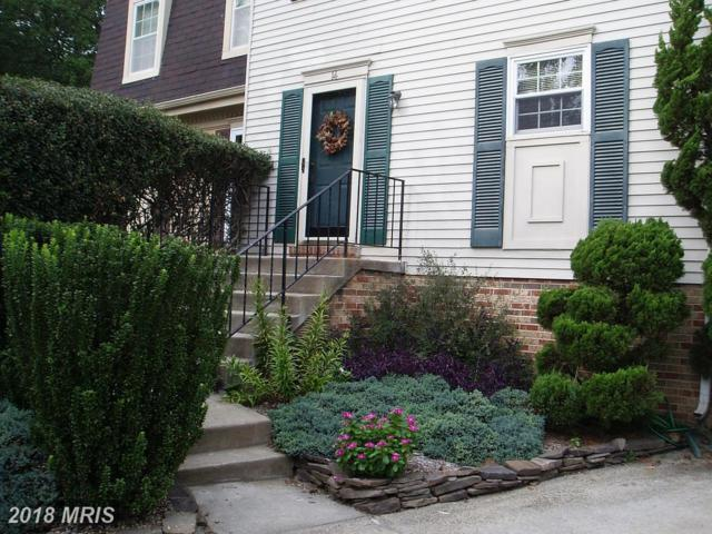 14 Mooring Point Court, Annapolis, MD 21403 (#AA10054796) :: Pearson Smith Realty