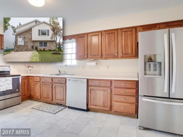 1613 Virginia Street, Annapolis, MD 21401 (#AA10058328) :: Pearson Smith Realty