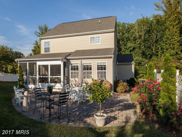 703 Lynngate Road #10, Severna Park, MD 21146 (#AA10072828) :: Pearson Smith Realty