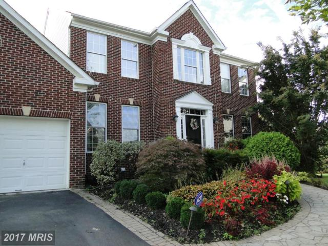 2407 Lawndale Court, Gambrills, MD 21054 (#AA10073293) :: LoCoMusings