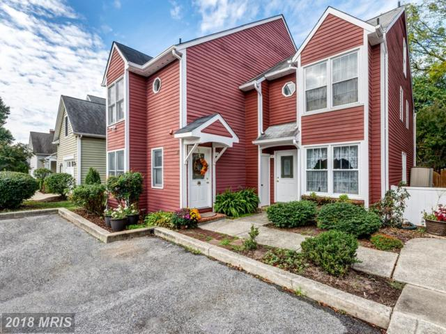 14 Cherry Grove Avenue S, Annapolis, MD 21401 (#AA10083180) :: The Gus Anthony Team