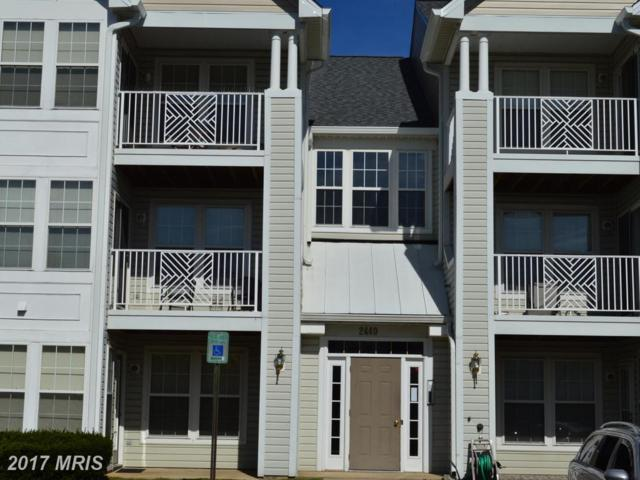 2440 Blue Spring Court #202, Odenton, MD 21113 (#AA10088245) :: Charis Realty Group