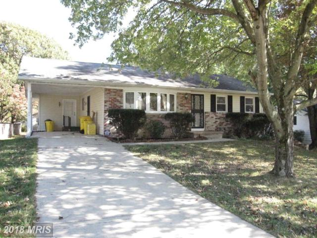 137 Magothy Beach Road, Pasadena, MD 21122 (#AA10092005) :: Keller Williams Pat Hiban Real Estate Group
