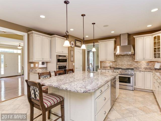 1505 Bromfield Way, Annapolis, MD 21409 (#AA10112322) :: Pearson Smith Realty