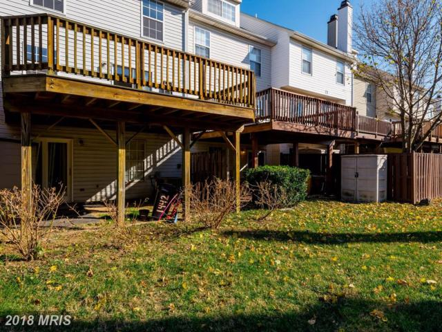 1442 Stoney Point Way, Stoney Beach, MD 21226 (#AA10113950) :: Pearson Smith Realty