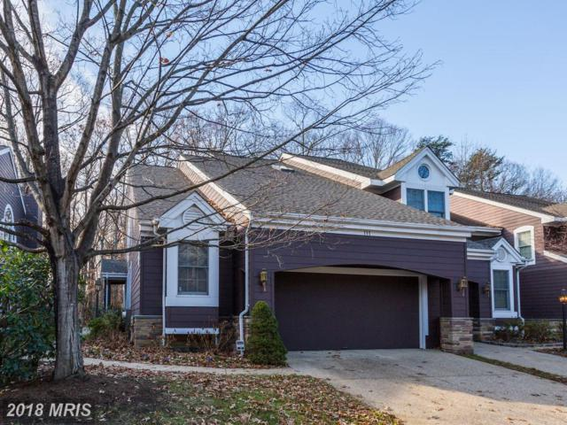 111 Summer Village Drive, Annapolis, MD 21401 (#AA10117906) :: Pearson Smith Realty