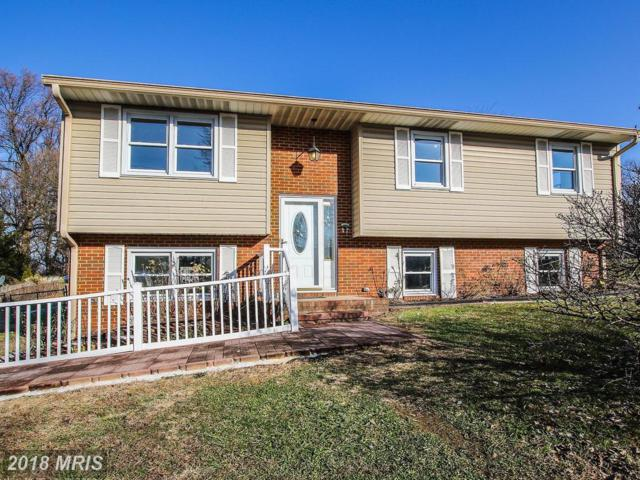 290 Forest Lane, Arnold, MD 21012 (#AA10118644) :: Pearson Smith Realty