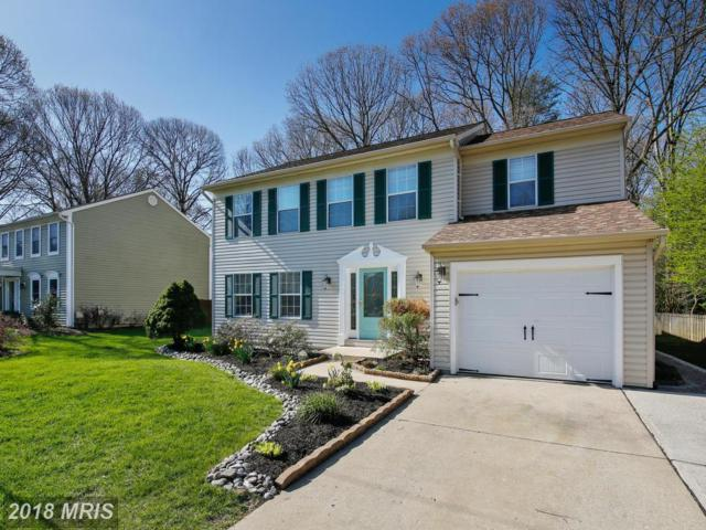 259 Lower Magothy Beach Road, Severna Park, MD 21146 (#AA10133221) :: The Gus Anthony Team