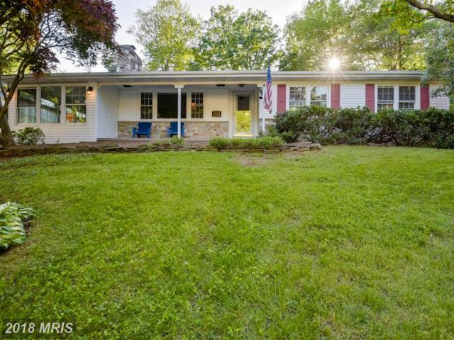 305 Halsey Road, Annapolis, MD 21401 (#AA10193368) :: The Gus Anthony Team