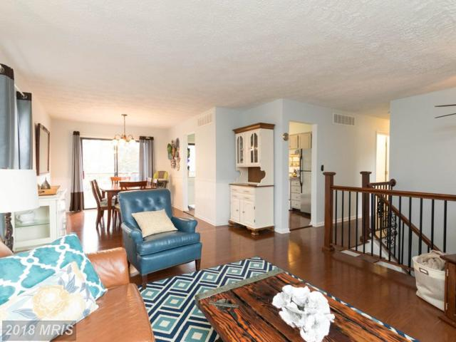 242 Chatham Lane, Annapolis, MD 21403 (#AA10198214) :: RE/MAX Gateway