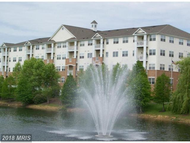 2605 Chapel Lake Drive #213, Gambrills, MD 21054 (#AA10203246) :: RE/MAX Executives