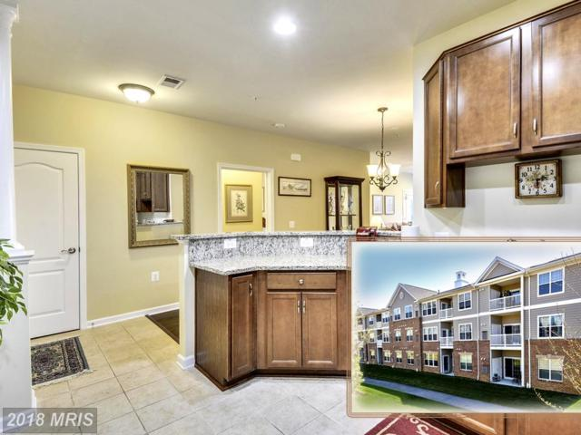 1406 Wigeon Way #102, Gambrills, MD 21054 (#AA10217607) :: Tessier Real Estate