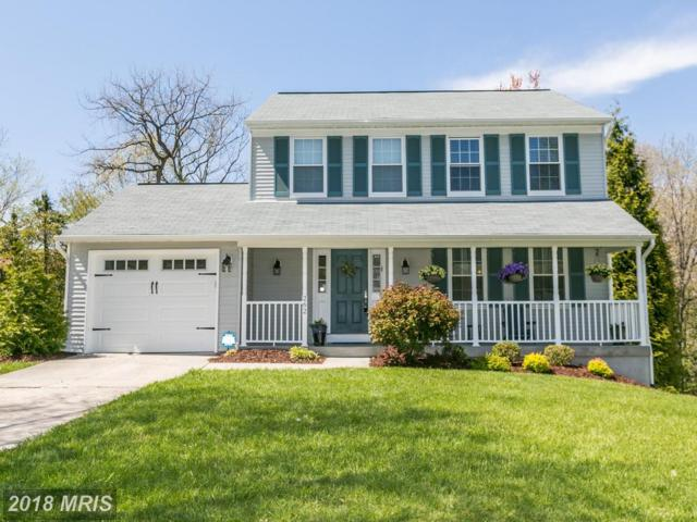 262 Tolstoy Lane, Severna Park, MD 21146 (#AA10222206) :: The Gus Anthony Team