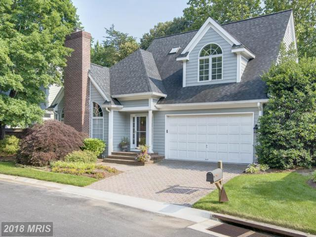 205 Spring Race Court, Annapolis, MD 21401 (#AA10222525) :: Bob Lucido Team of Keller Williams Integrity